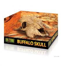 Decor terariu Hagen Exo Terra Buffalo Skull PT2857