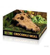 Decor terariu, Exo Terra Crocodile Skull PT2856