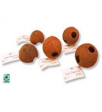 Decor terariu, JBL Cocos Cava 1/1 M
