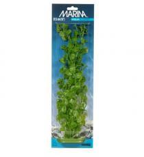 Plante pentru acvariu Hagen Marina Cardamine PP863, 20 cm