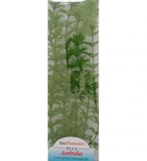 Plante pentru acvariu Tetra DecoArt Ambulia L, 30 cm