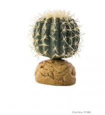 Plante pentru terariu, Exo Terra, Barrel Cactus Small PT2980